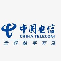 中国电信武汉分公司 - 副本.jpg